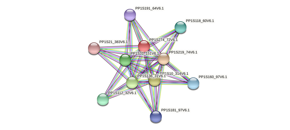 PP1S274_72V6.1 protein (Physcomitrella patens) - STRING interaction network