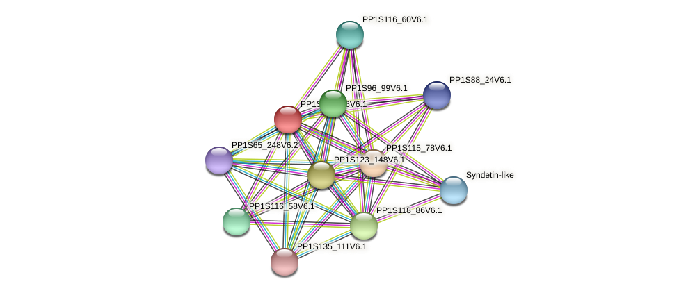 PP1S274_86V6.1 protein (Physcomitrella patens) - STRING interaction network