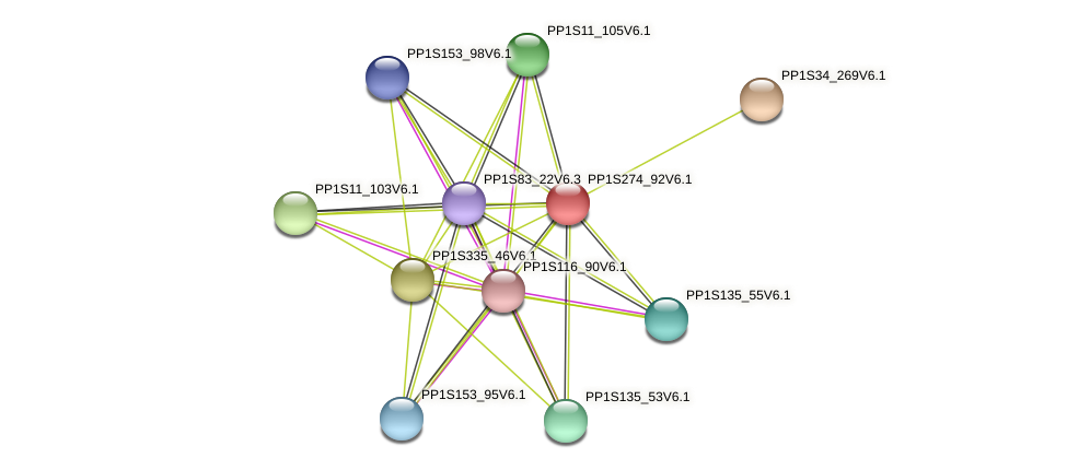 PP1S274_92V6.1 protein (Physcomitrella patens) - STRING interaction network