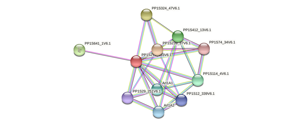 PP1S275_103V6.1 protein (Physcomitrella patens) - STRING interaction network