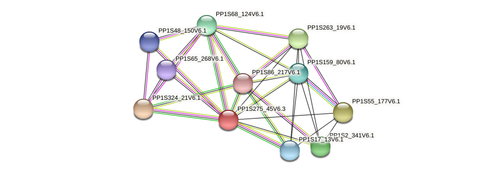 PP1S275_45V6.1 protein (Physcomitrella patens) - STRING interaction network