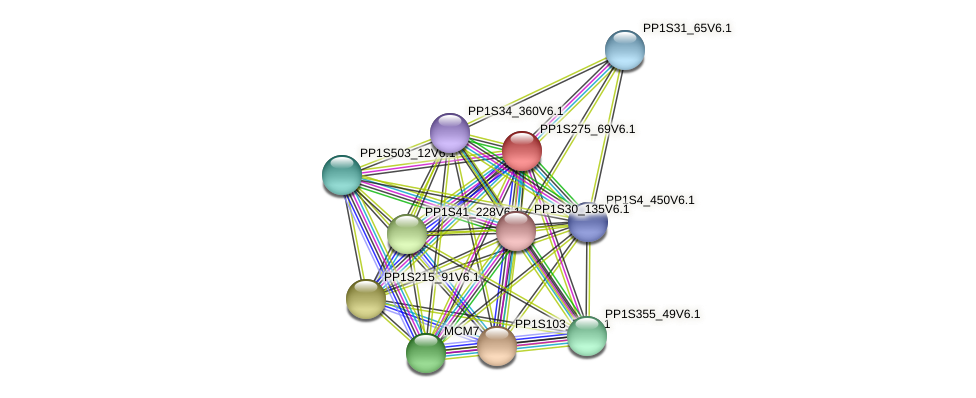 PP1S275_69V6.1 protein (Physcomitrella patens) - STRING interaction network