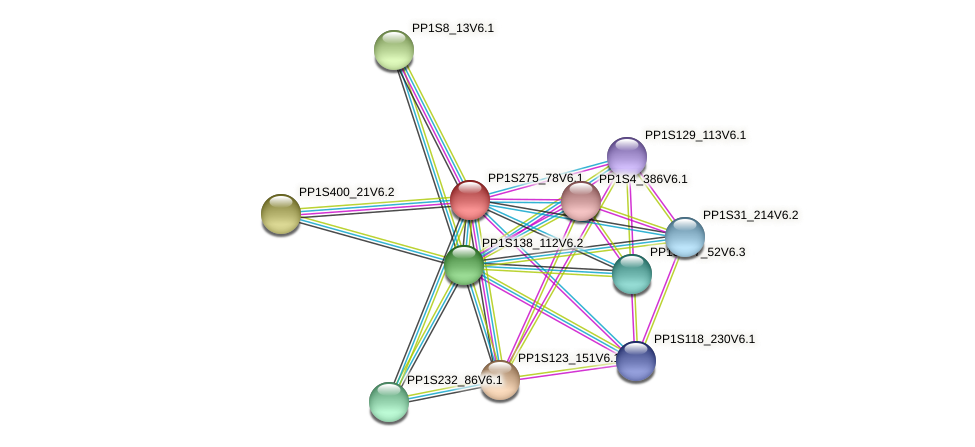PP1S275_78V6.1 protein (Physcomitrella patens) - STRING interaction network