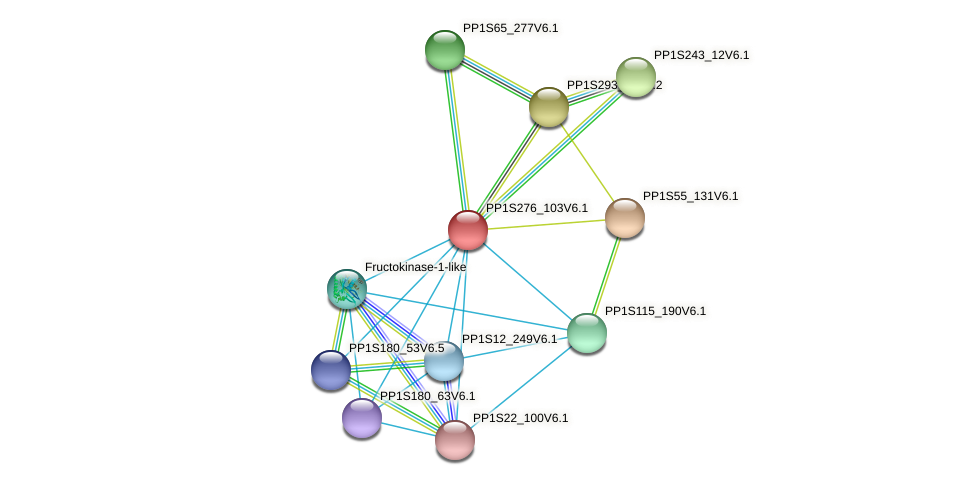 PP1S276_103V6.1 protein (Physcomitrella patens) - STRING interaction network