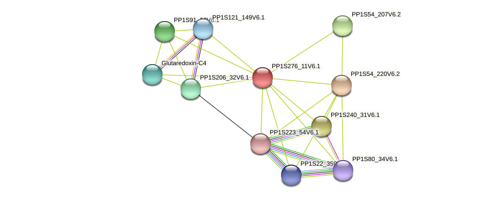 PP1S276_11V6.1 protein (Physcomitrella patens) - STRING interaction network
