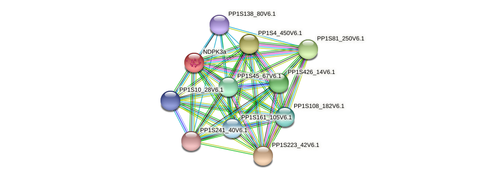 NDPK3a protein (Physcomitrella patens) - STRING interaction network