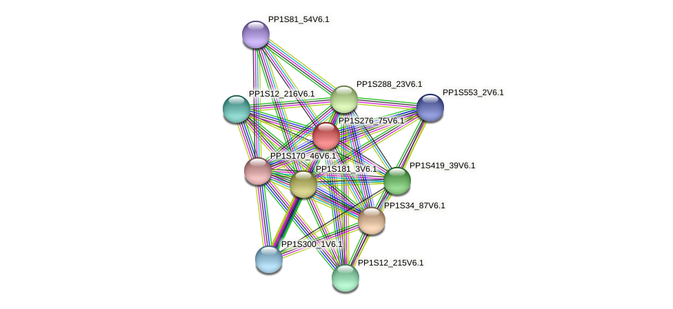 PP1S276_75V6.1 protein (Physcomitrella patens) - STRING interaction network