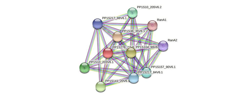 PP1S276_77V6.1 protein (Physcomitrella patens) - STRING interaction network
