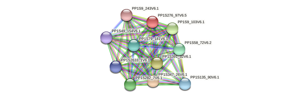 PP1S276_97V6.1 protein (Physcomitrella patens) - STRING interaction network