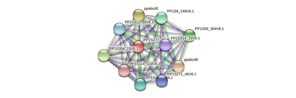 PP1S277_18V6.1 protein (Physcomitrella patens) - STRING interaction network