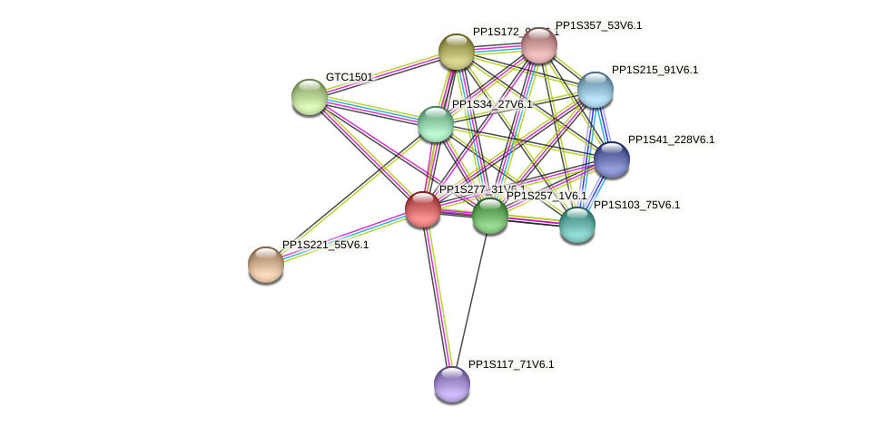 PP1S277_31V6.1 protein (Physcomitrella patens) - STRING interaction network
