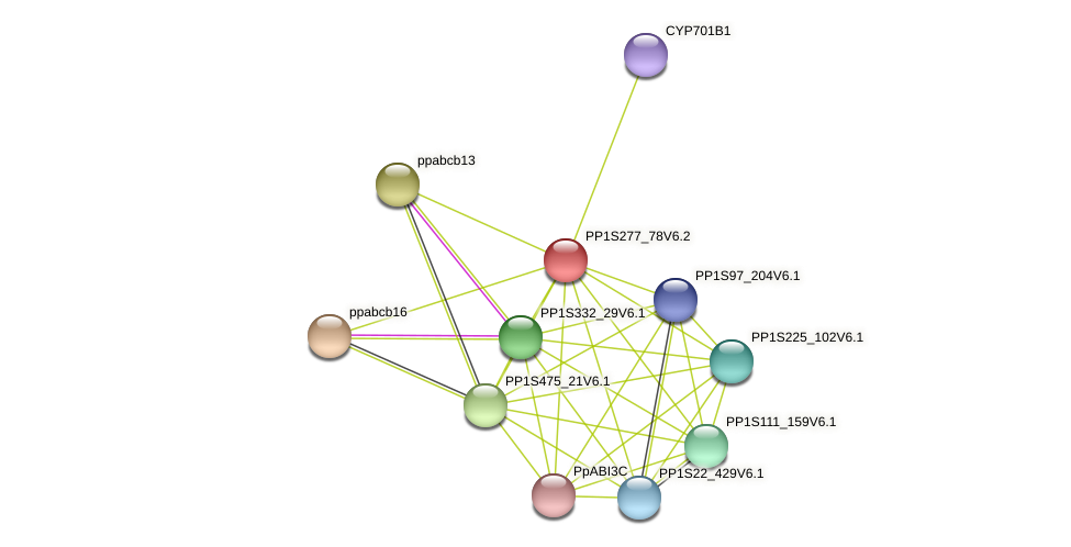 PP1S277_78V6.2 protein (Physcomitrella patens) - STRING interaction network