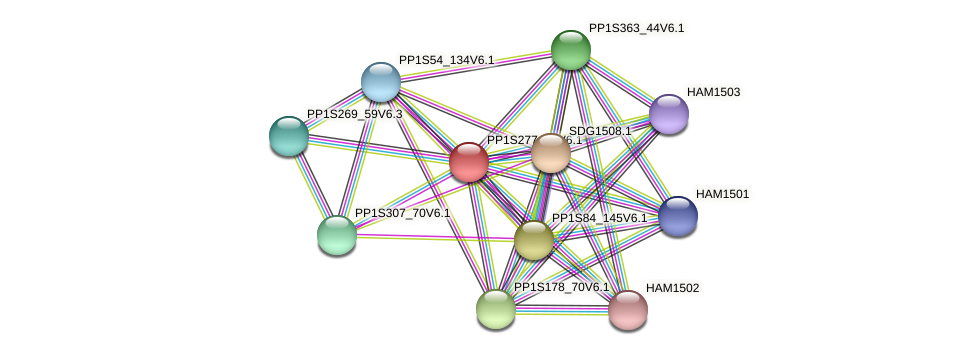 PP1S277_88V6.1 protein (Physcomitrella patens) - STRING interaction network