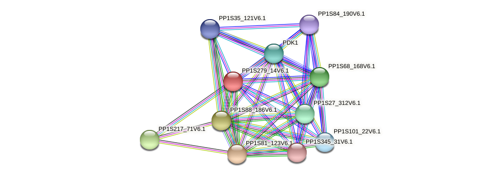 PP1S279_14V6.1 protein (Physcomitrella patens) - STRING interaction network