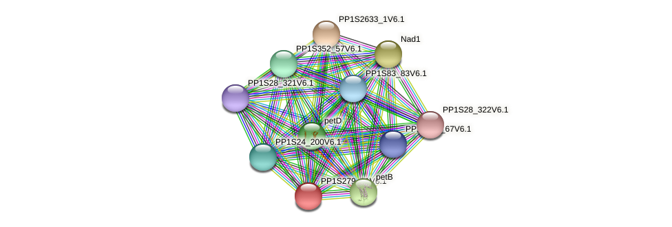 PP1S279_31V6.1 protein (Physcomitrella patens) - STRING interaction network
