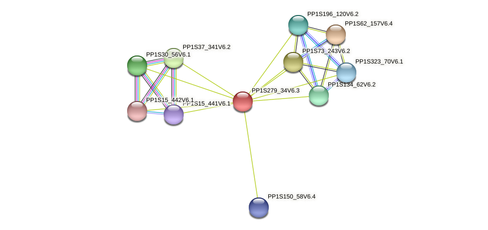 PP1S279_34V6.1 protein (Physcomitrella patens) - STRING interaction network
