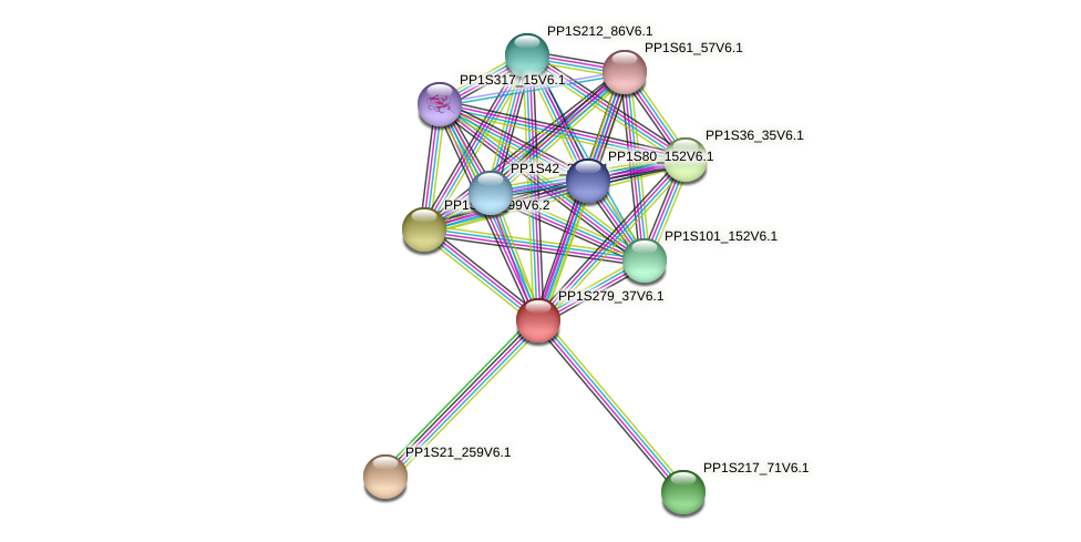PP1S279_37V6.1 protein (Physcomitrella patens) - STRING interaction network