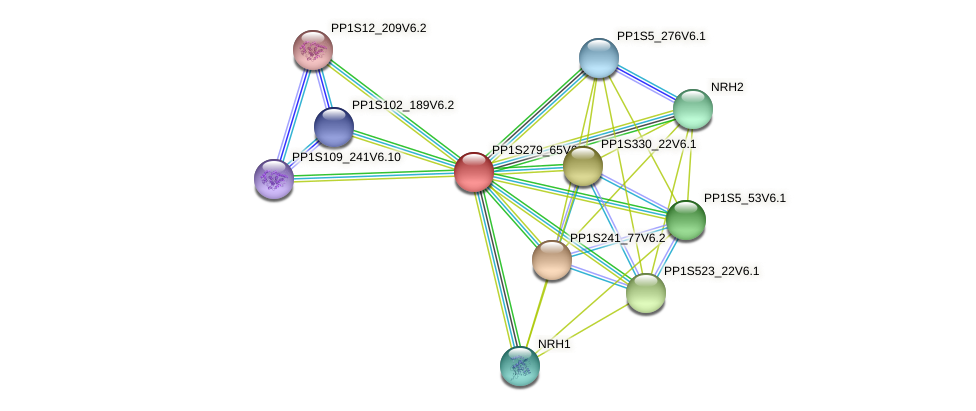 PP1S279_65V6.1 protein (Physcomitrella patens) - STRING interaction network