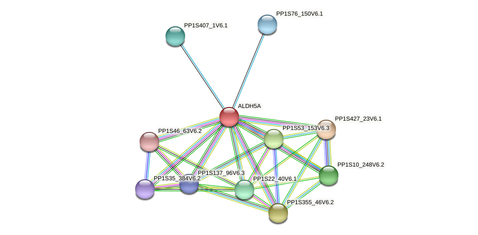 ALDH5A protein (Physcomitrella patens) - STRING interaction network