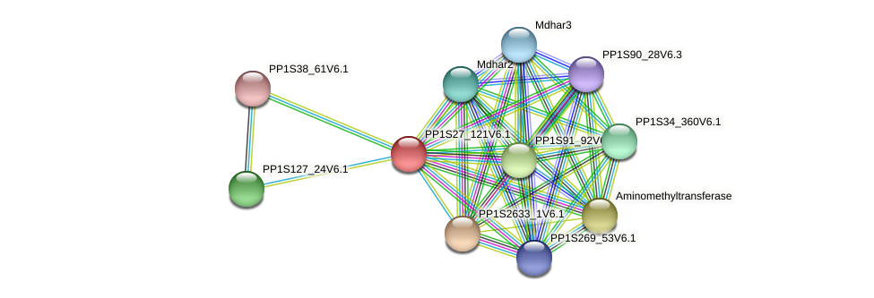 PP1S27_121V6.1 protein (Physcomitrella patens) - STRING interaction network