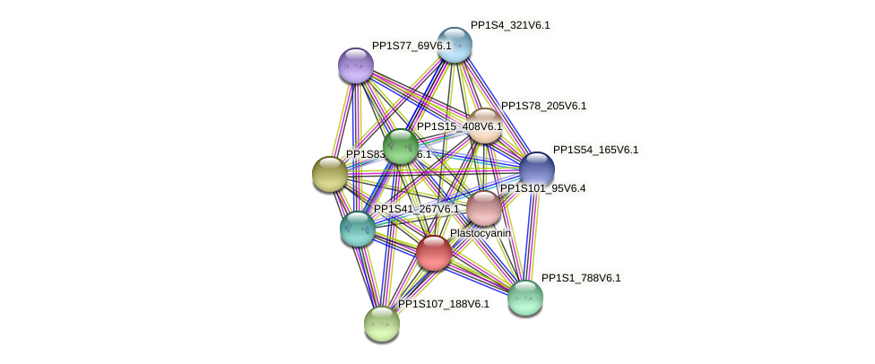 PP1S27_130V6.1 protein (Physcomitrella patens) - STRING interaction network