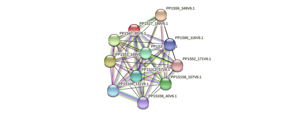 PP1S27_189V6.1 protein (Physcomitrella patens) - STRING interaction network