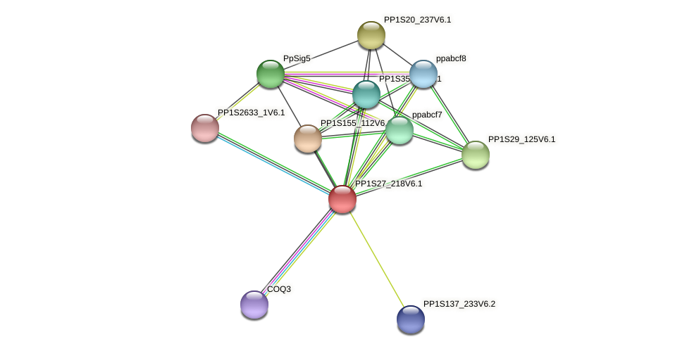 PP1S27_218V6.1 protein (Physcomitrella patens) - STRING interaction network