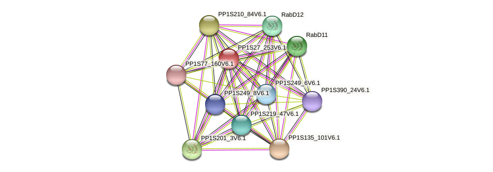 PP1S27_253V6.1 protein (Physcomitrella patens) - STRING interaction network