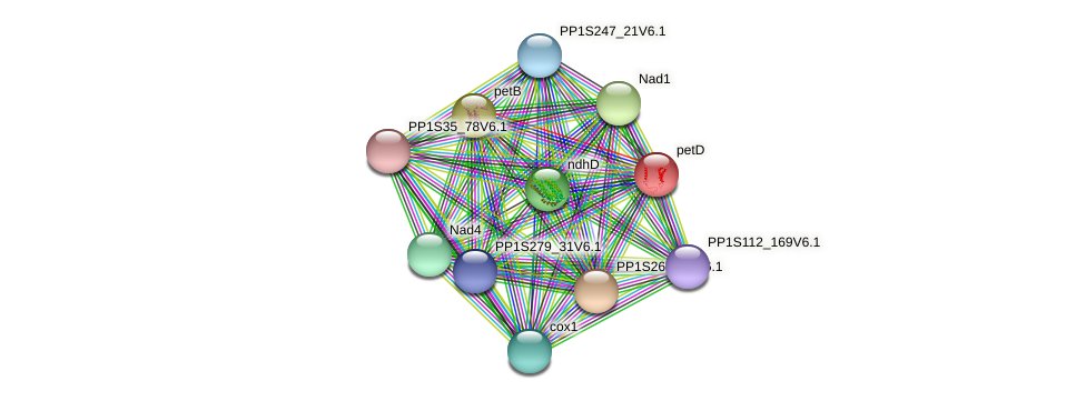 petD protein (Physcomitrella patens) - STRING interaction network