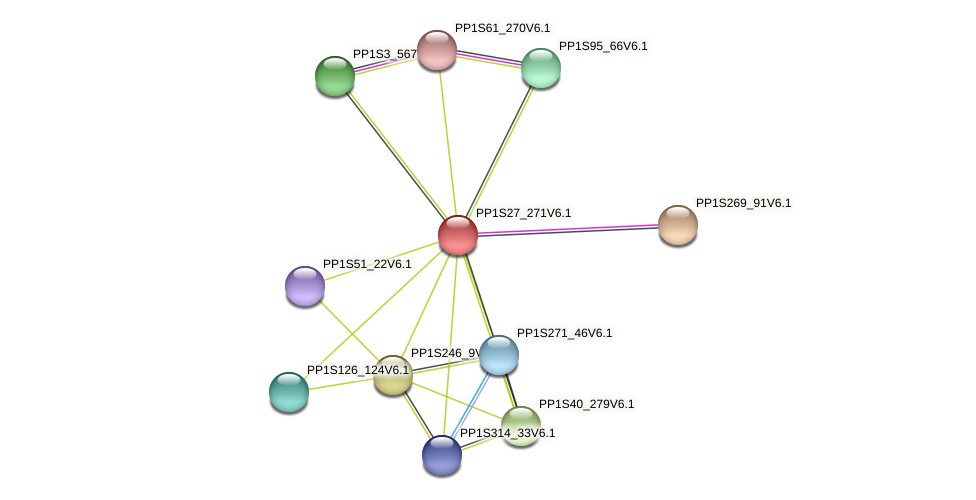 PP1S27_271V6.1 protein (Physcomitrella patens) - STRING interaction network