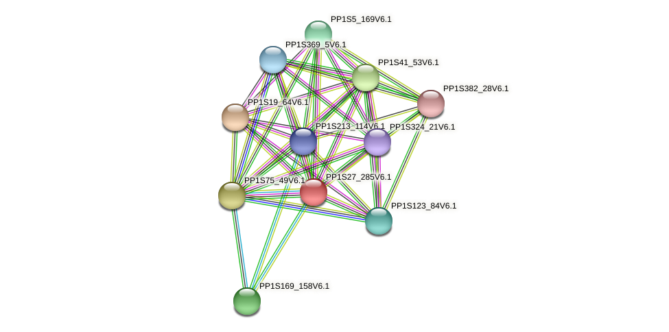 PP1S27_285V6.1 protein (Physcomitrella patens) - STRING interaction network