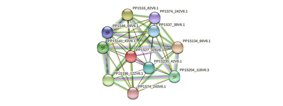 PP1S27_326V6.1 protein (Physcomitrella patens) - STRING interaction network