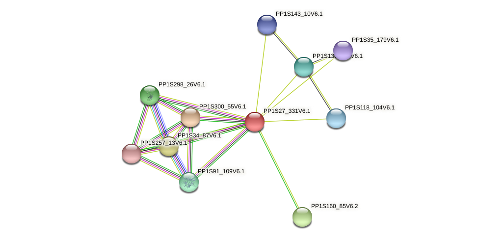 PP1S27_331V6.1 protein (Physcomitrella patens) - STRING interaction network