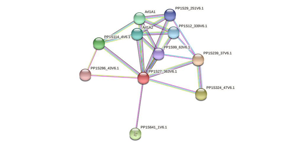 PP1S27_363V6.1 protein (Physcomitrella patens) - STRING interaction network