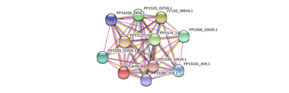 PP1S280_36V6.1 protein (Physcomitrella patens) - STRING interaction network