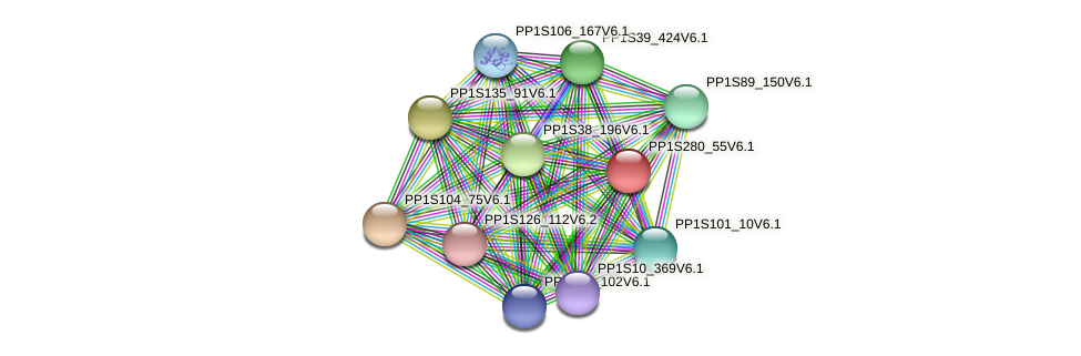 PP1S280_55V6.1 protein (Physcomitrella patens) - STRING interaction network