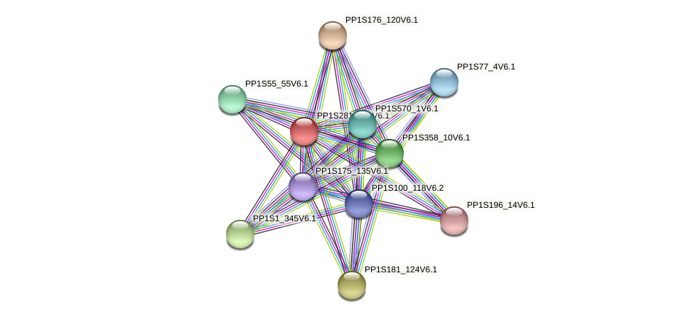 PP1S281_108V6.1 protein (Physcomitrella patens) - STRING interaction network