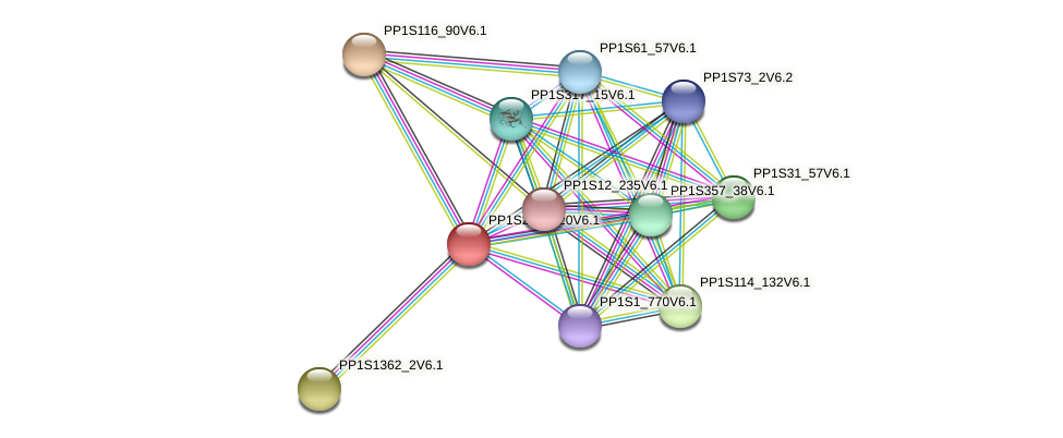 PP1S281_120V6.1 protein (Physcomitrella patens) - STRING interaction network