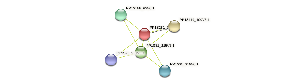 PP1S281_70V6.1 protein (Physcomitrella patens) - STRING interaction network