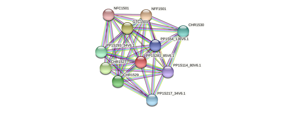 PP1S281_85V6.1 protein (Physcomitrella patens) - STRING interaction network