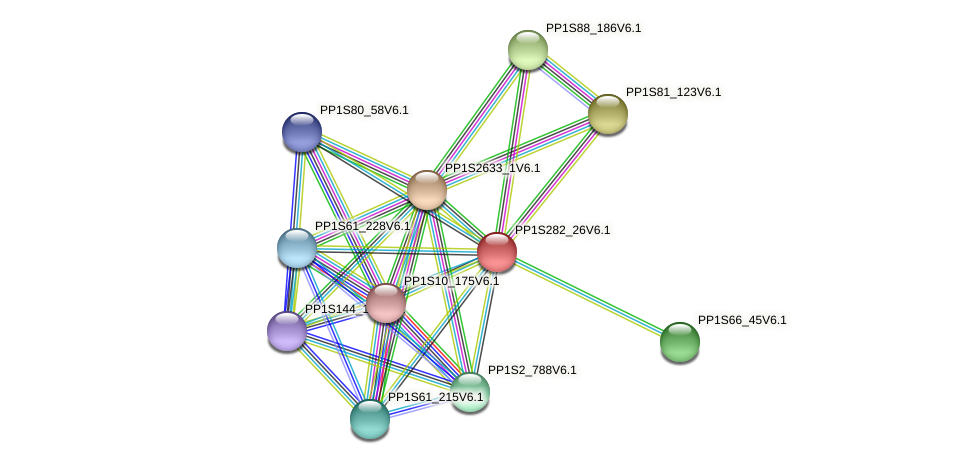 PP1S282_26V6.1 protein (Physcomitrella patens) - STRING interaction network