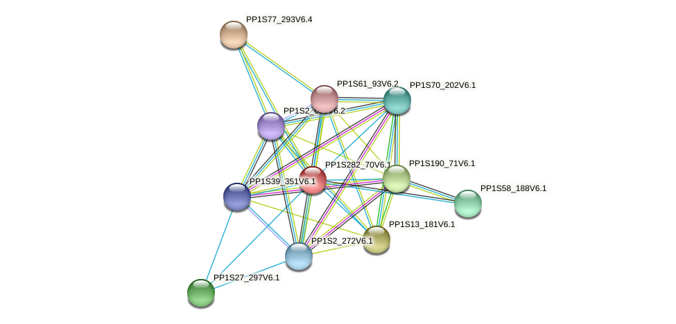 PP1S282_70V6.1 protein (Physcomitrella patens) - STRING interaction network