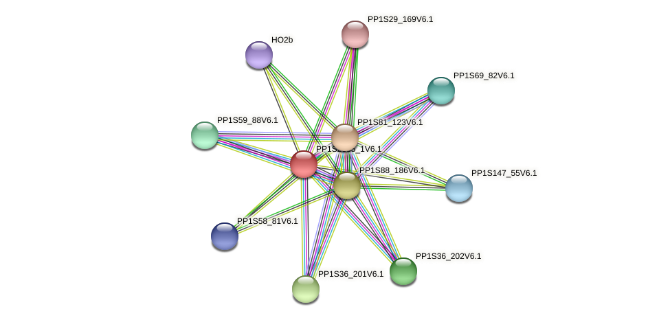 ppabcb22 protein (Physcomitrella patens) - STRING interaction network