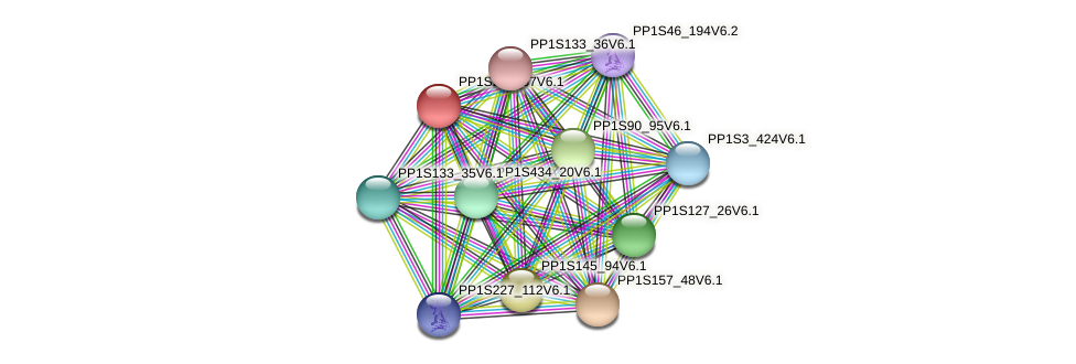 PP1S283_37V6.1 protein (Physcomitrella patens) - STRING interaction network