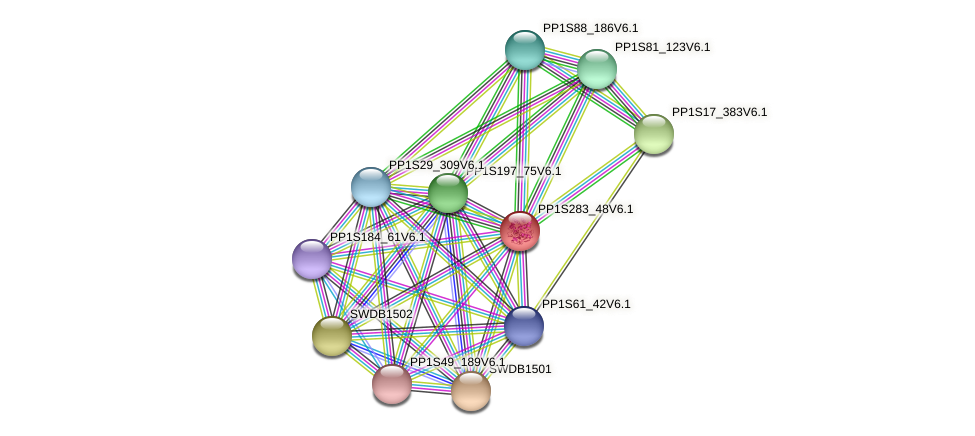 PP1S283_48V6.1 protein (Physcomitrella patens) - STRING interaction network