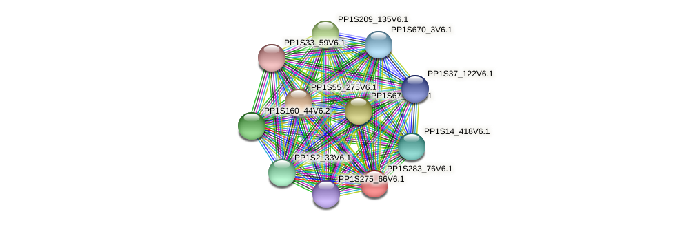 PP1S283_76V6.1 protein (Physcomitrella patens) - STRING interaction network