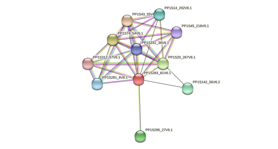 PP1S283_81V6.1 protein (Physcomitrella patens) - STRING interaction network