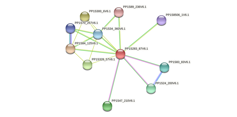 PP1S283_87V6.1 protein (Physcomitrella patens) - STRING interaction network