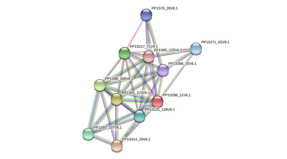 PP1S286_11V6.1 protein (Physcomitrella patens) - STRING interaction network