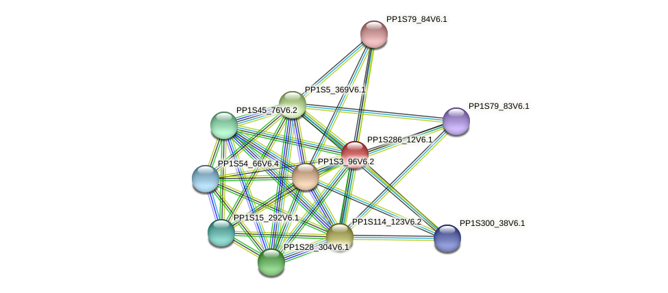 PP1S286_12V6.1 protein (Physcomitrella patens) - STRING interaction network